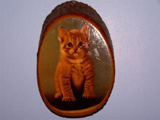 Cat Mandu